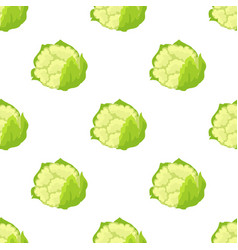 cauliflower isolated seamless endless pattern vector image