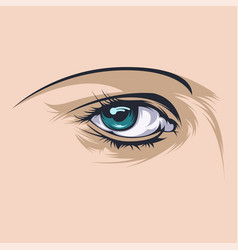 Close up realistic of two eyes vector