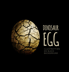Egg of a dinosaur on a black background realistic vector