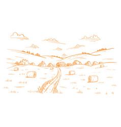 field road rural landscape mown straw grass vector image
