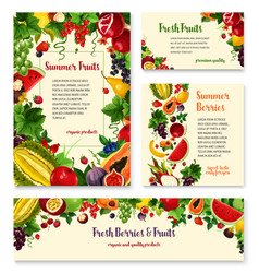Fruit berry banner template set for food design vector