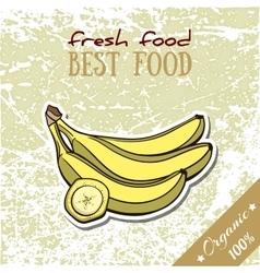 Healthy Food Banana vector image