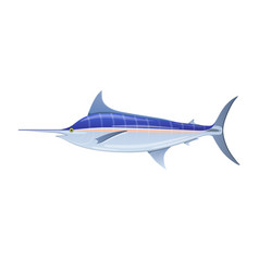 Sailfish blue marlin swordfish with long thin nose vector