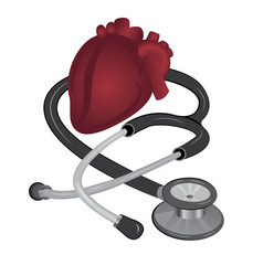 stethoscope and heart medical measurement tool vector image
