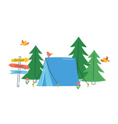 touristic tent in wild forest with flying birds vector image