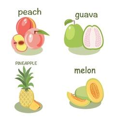 fruits peach guava melon pineapple vector image
