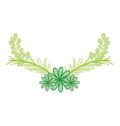 Beutiful branches plants decoration vector