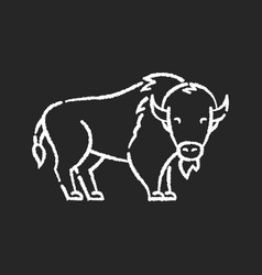 bison chalk white icon on black background vector image