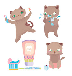 cute cartoon cat morning routine vector image