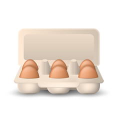 eggs in cardboard package vector image