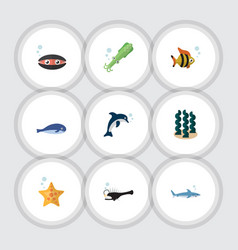 Flat icon marine set of alga playful fish sea vector