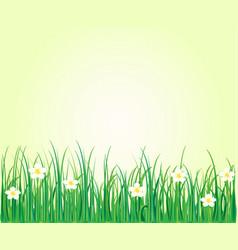 Grass nature flowers vector