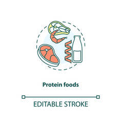 Protein foods concept icon vector