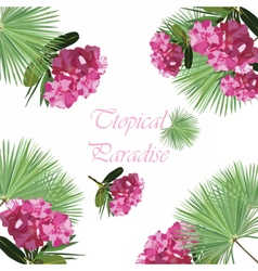 Tropic flowers card vector