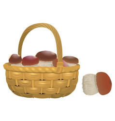 Wicker basket full of orange cap boletus isolated vector
