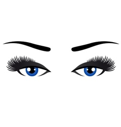 blue eyes with long eyelashes vector image