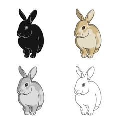 gray rabbitanimals single icon in cartoon style vector image