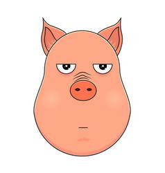 head of annoyed pig in cartoon style kawaii vector image