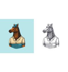 Horse character in coat dobbin polo player vector