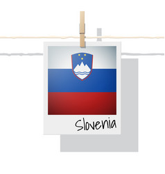 Photo of slovenia flag vector