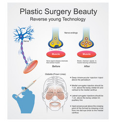 Plastic surgery beauty reverse young technology vector