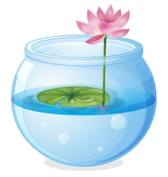 An aquarium with a waterlily and a flower vector image