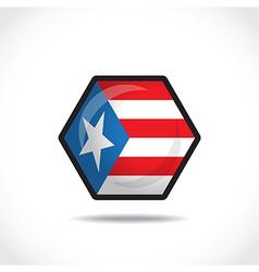 USA flag icon vector image
