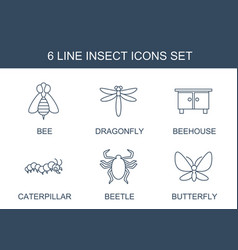 6 insect icons vector