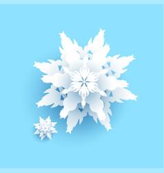 big white snowflake vector image
