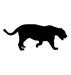 Black silhouette of running leopard on white vector