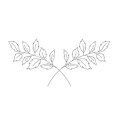 Branch with leaves isolated icon vector