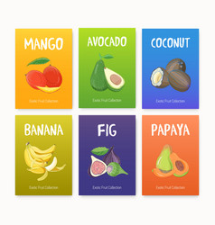 Collection of bright colored cards with delicious vector
