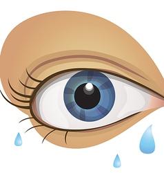 Eye2 vector