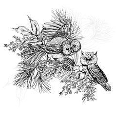 Forest greeting card with owls spruce and fir vector