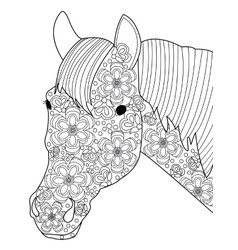Head horse coloring for adults vector image