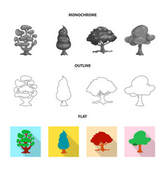 isolated object of tree and nature sign set of vector image