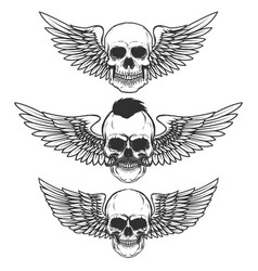 set of winged skulls isolated on white background vector image