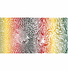 tiger and leopard and color pattern background vector image