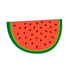 watermelon fruit slice or cross section with seeds vector image