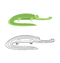 Crocodile Coloring book Good caiman Wild animal vector image