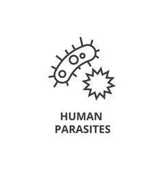 Human parasites thin line icon sign symbol vector