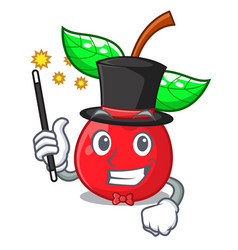 Magician cherries fruit isolated with the cartoon vector