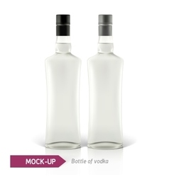 Mockup vodka bottle vector image