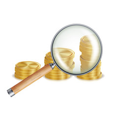 Money and magnifying glass coins business vector