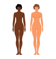 african and european women human front side vector image vector image