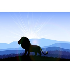Lion in the field at dawn vector image