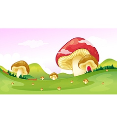 Big and small mushrooms vector