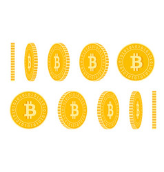 Bitcoin internet currency coins set animation vector