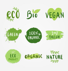 ecologic and healthy food set vector image