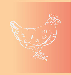 Hand-drawn hen engraving stencil style vector